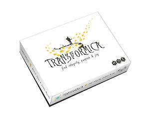 Transformica box_visual.jpg