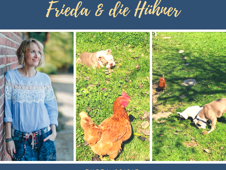 Frieda & die Hühner