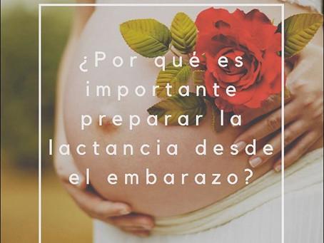 ¿Por qué es importante preparar la lactancia desde el embarazo?