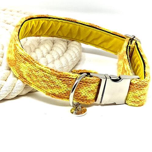 Orange & Yellow - Barclay Design - Dog Collar