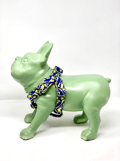 Cobalt & Yellow - Kerr Design - Dog Harness