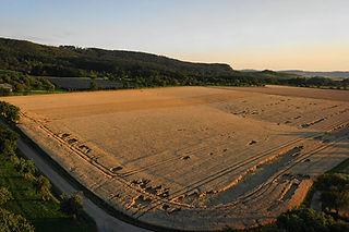 TOPVIEW | Agrarwirtschaft