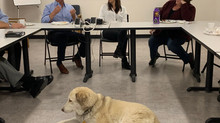 Senspex Visits Paws and Stripes Headquarters