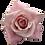 Thumbnail: Sweet Escimo