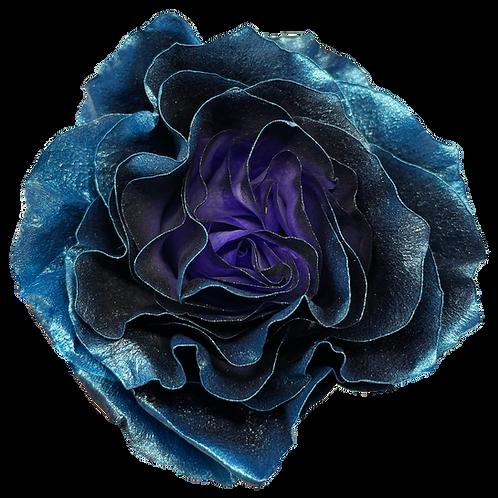 Estelar Blue