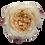 Thumbnail: Mayra's Rose Light