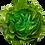 Thumbnail: Folding Green