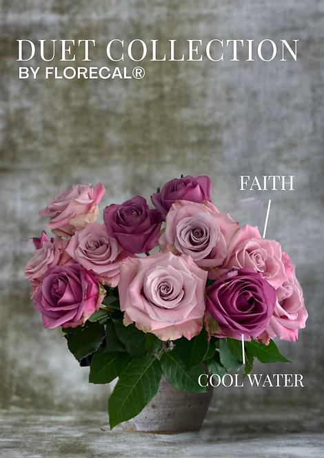 Duet Faith & Cool Water