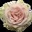 Thumbnail: Pink Mondial