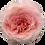 Thumbnail: Mayra's Rose Bridal Pink