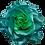 Thumbnail: Greenwater