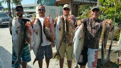 deep sea fishing madeira beach FL