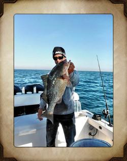 Grouper fishing Johns Pass, Florida