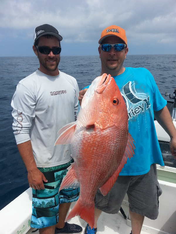 American Red Snapper|Fishprocharters