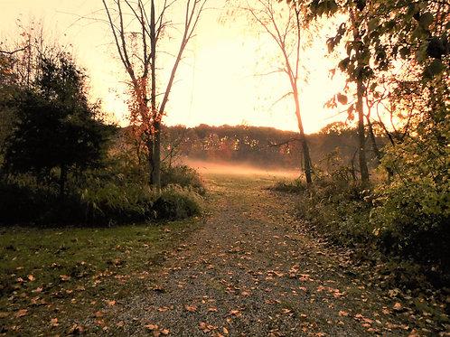 Misty Meadow Print