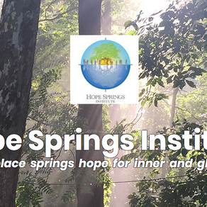It's Here, HSI's New Website is Up!