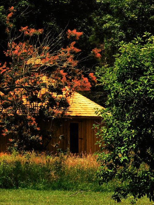 Spirit House in Fall Print