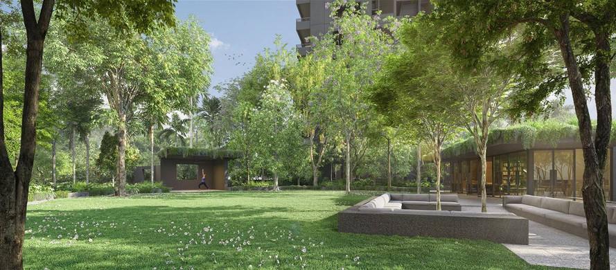 Midtown Modern Lawn