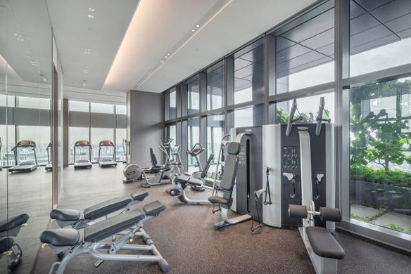 Wallich Residence - Gym