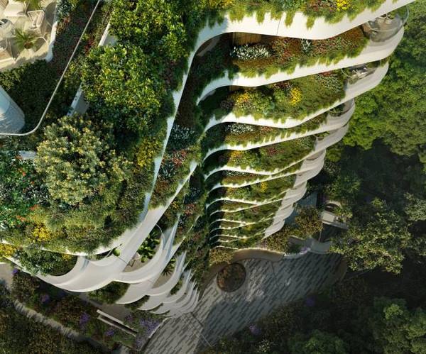 Park Nova - Looking down to street level