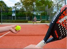 garden tennis.png