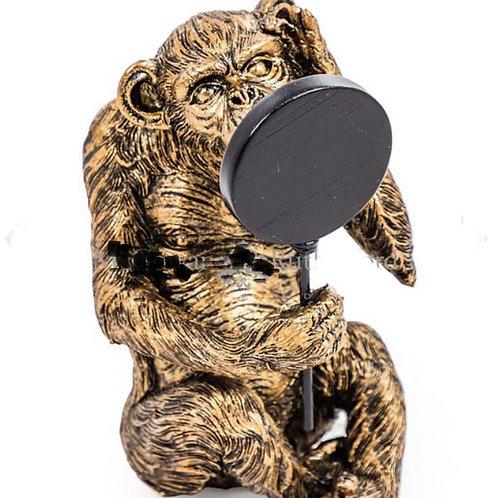 Vain Monkey with Mirror