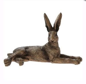 Laying Hare