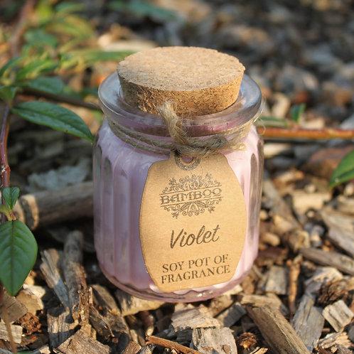 Glass Violet Soy Pot of Fragrance Candle
