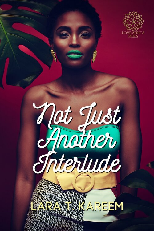 Not Just Another Interlude by Lara T Kareem