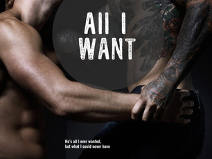 He knows what you think of him and he doesn't care #MMRomance #99cents @meganlowe87 All I Want