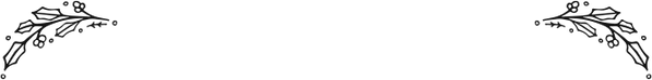 jolakrans-2.png
