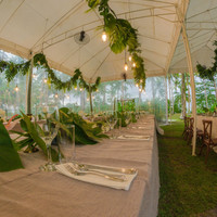 Reception and event outdoor tents displays all the wonderful greens for a tropical wedding
