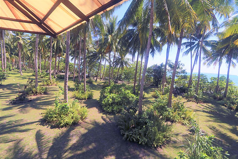 Porch view of Punta Dolores beach and garden from the Guesthouse