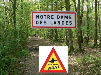 Notre Dame des Landes, Référendum, pour le Rassemblement pour la France c'est non !