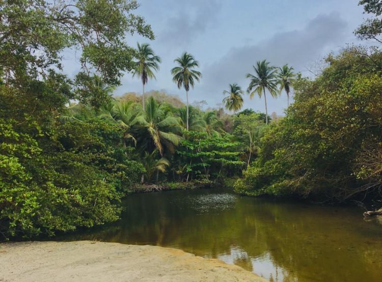 parc tayrona colombie