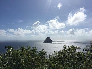 Le diamant Martinique