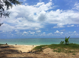 Flic en flac beach ile maurice