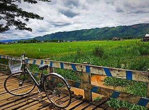 Nyaung Shwe Birmanie Myanmar