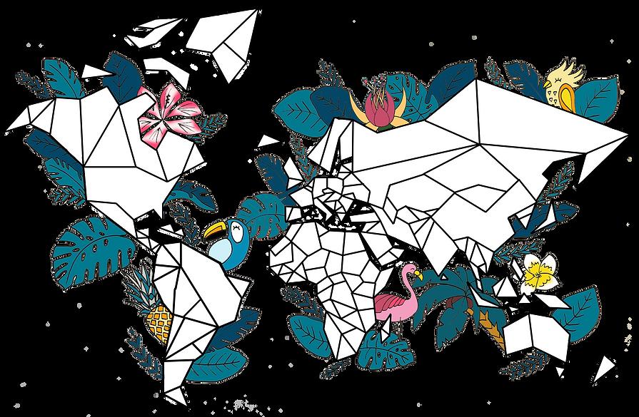 carte du monde tropicale protgée par Piñalife ©