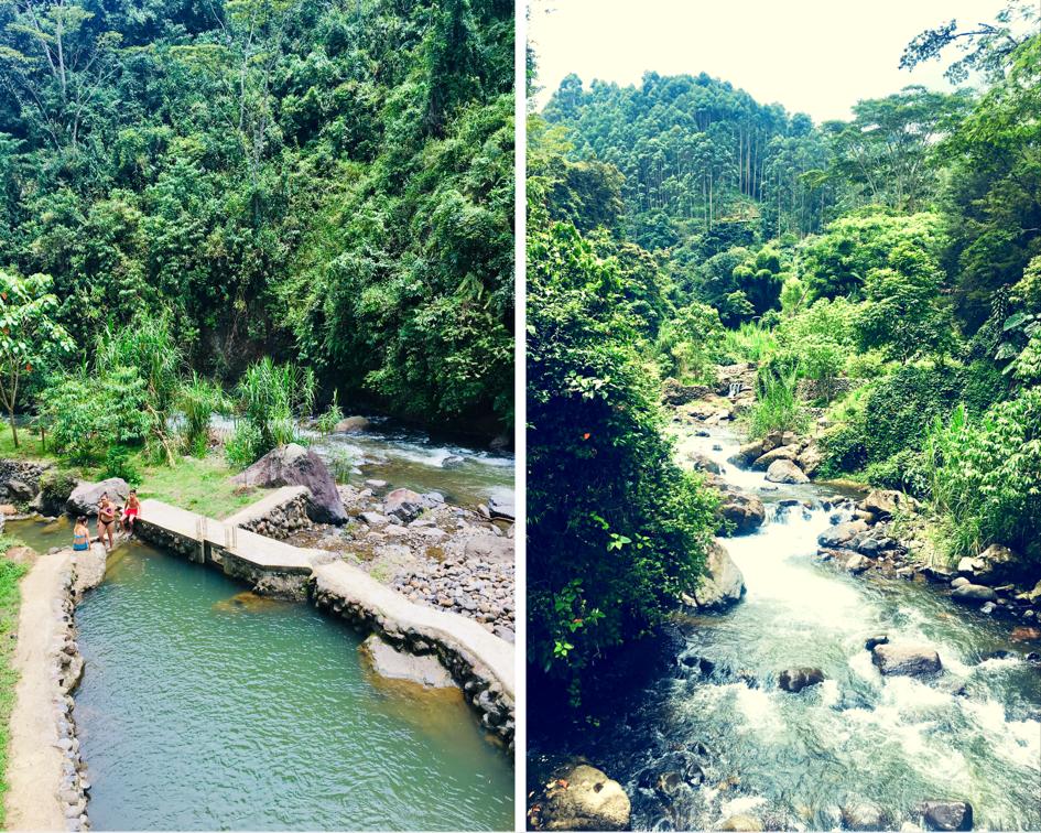 Jardin, Colombie