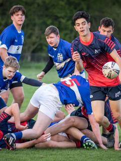 Kauri_Rugby.jpg