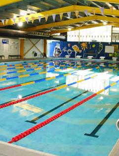 wesley_just_swim.jpg