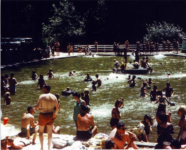 1965_Pool