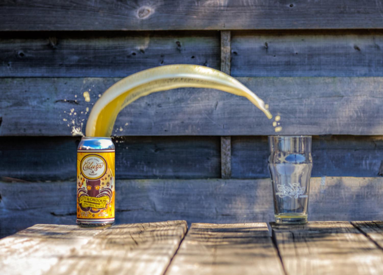 beerthrocitra.jpg