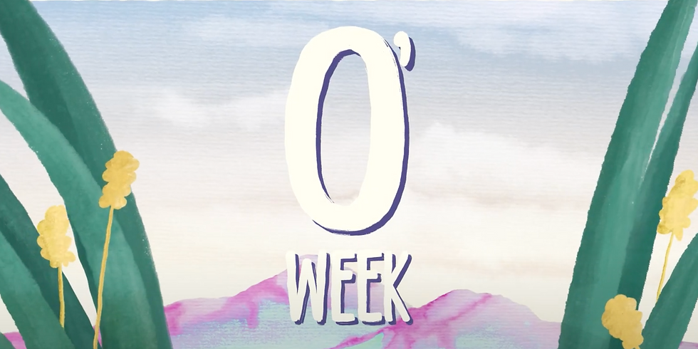 O'Week Stall