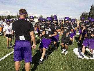 Tigers test out new field