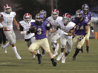 Tokay tamed by Patterson