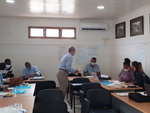 Mentorship programme for civil society organisations in Liberia and São Tomé and Príncipe