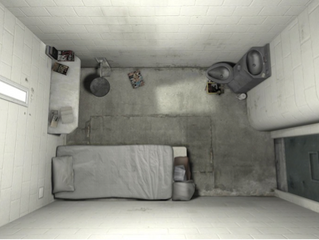 The Case of Solitary Confinement