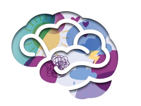 À la découverte des émotions (4) : Dans le corps et le cerveau